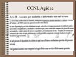 ccnl agidae29