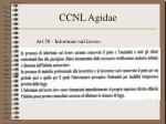 ccnl agidae30
