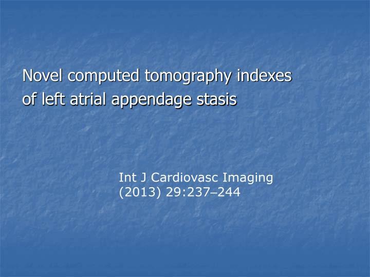 Novel computed tomography indexes