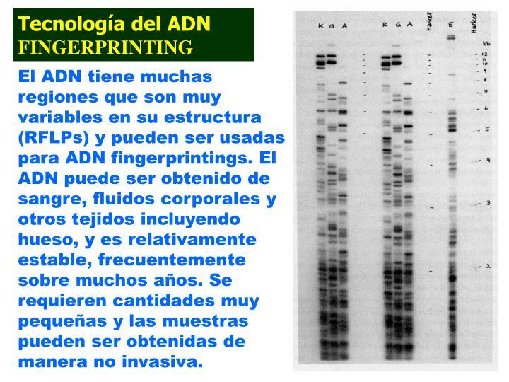 Tecnología del ADN