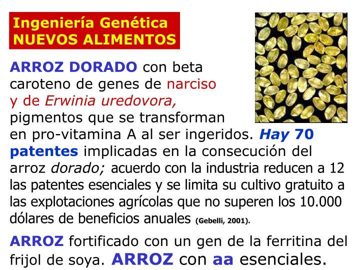 Ingeniería Genética