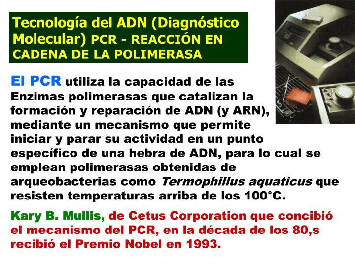 Tecnología del ADN (Diagnóstico