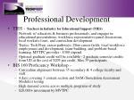 professional development