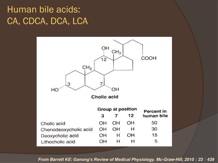 Human bile acids: