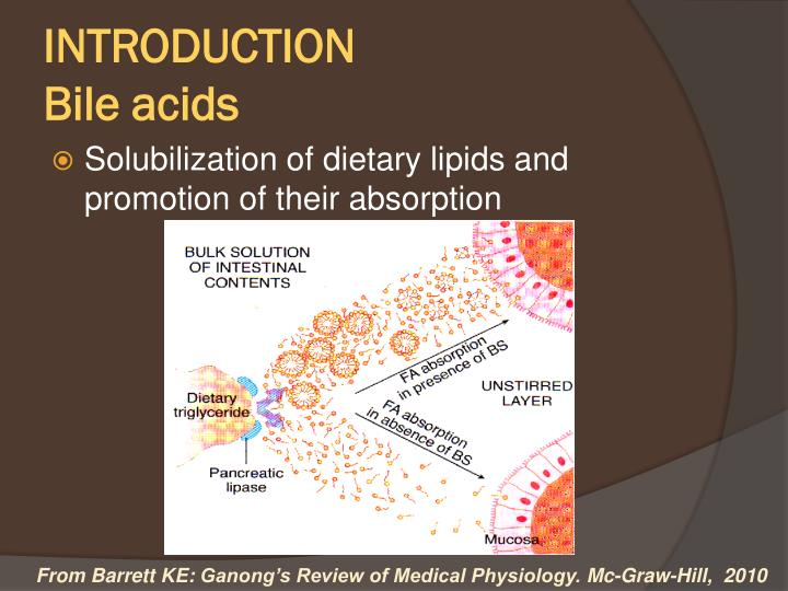 Introduction bile acids
