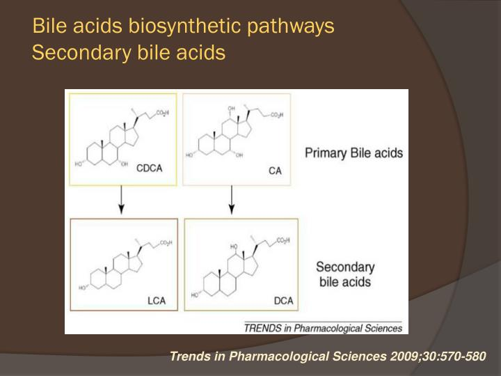 Bile acids biosynthetic pathways