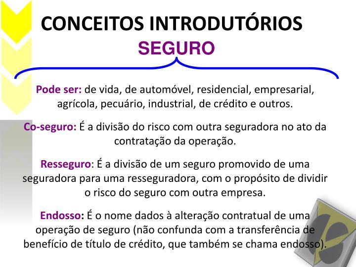 CONCEITOS INTRODUTÓRIOS