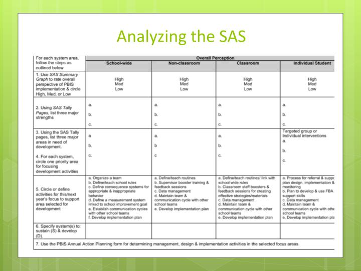 Analyzing the SAS