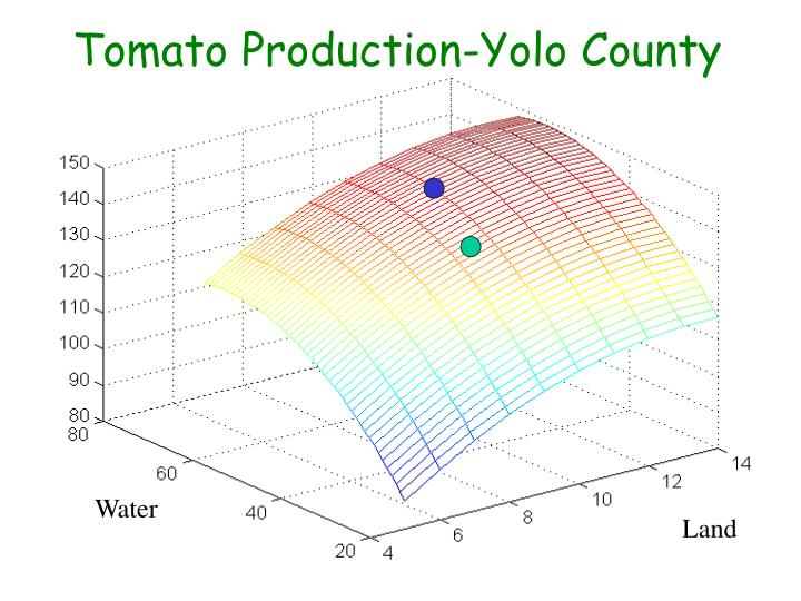 Tomato Production-Yolo County