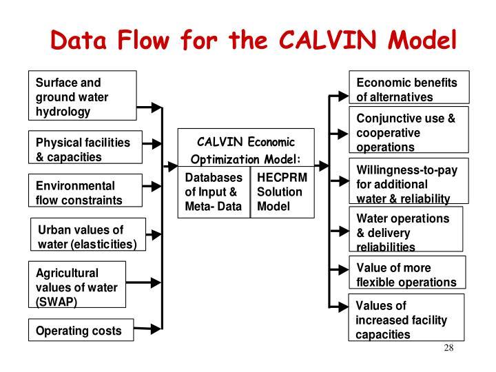 Data Flow for the CALVIN Model