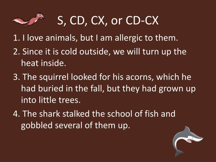 S, CD, CX, or CD-CX