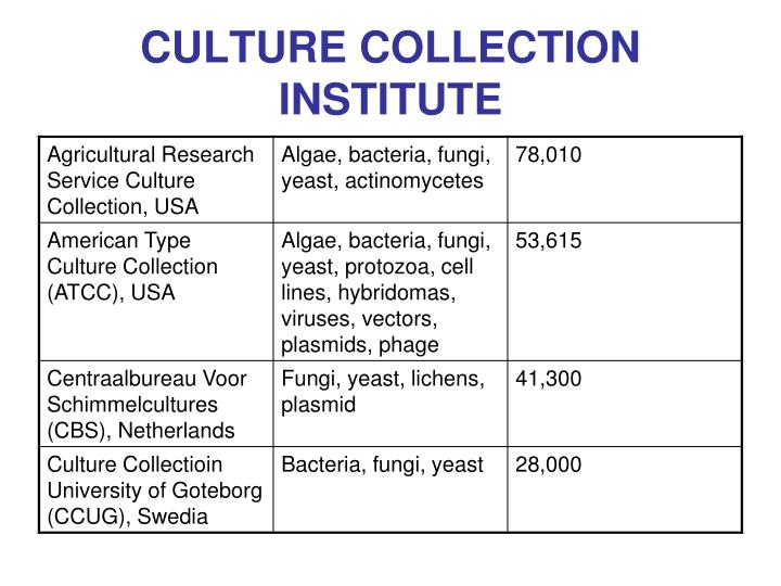 CULTURE COLLECTION INSTITUTE