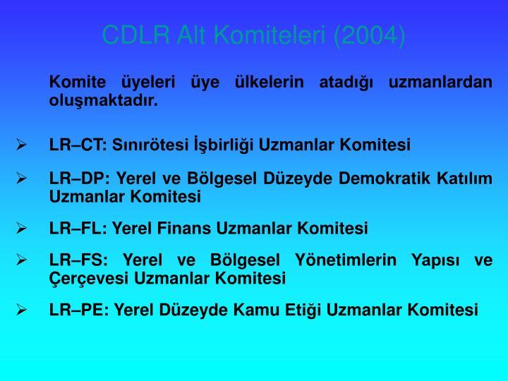 CDLR Alt Komiteleri (2004)