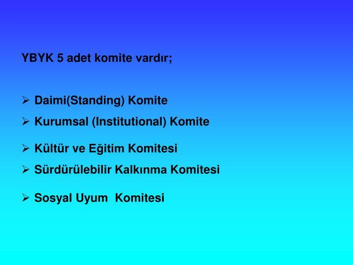 YBYK 5 adet komite vardr;