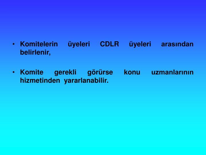 Komitelerin yeleri CDLR yeleri arasndan belirlenir,