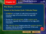 the ovum continued1