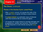 the ovum continued3