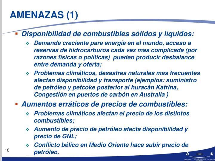AMENAZAS (1)