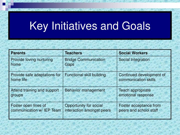 Key Initiatives and Goals