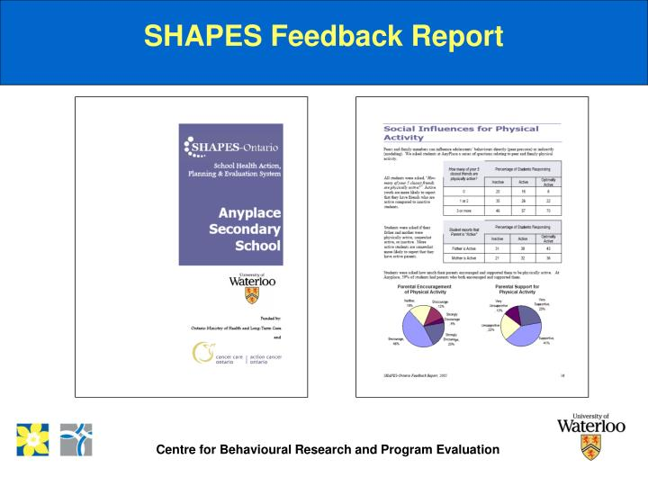 SHAPES Feedback Report