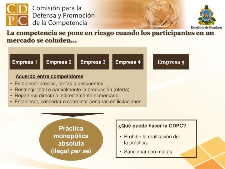 ¿Qué puede hacer la CDPC?