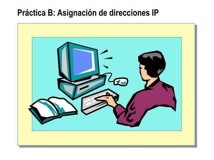Práctica B: Asignación de direcciones IP