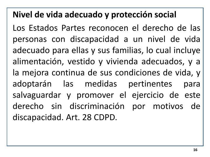 Nivel de vida adecuado y protección social