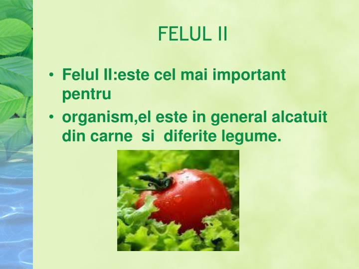 FELUL II