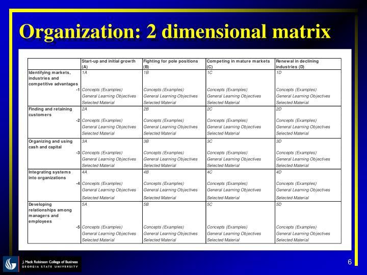 Organization: 2 dimensional matrix