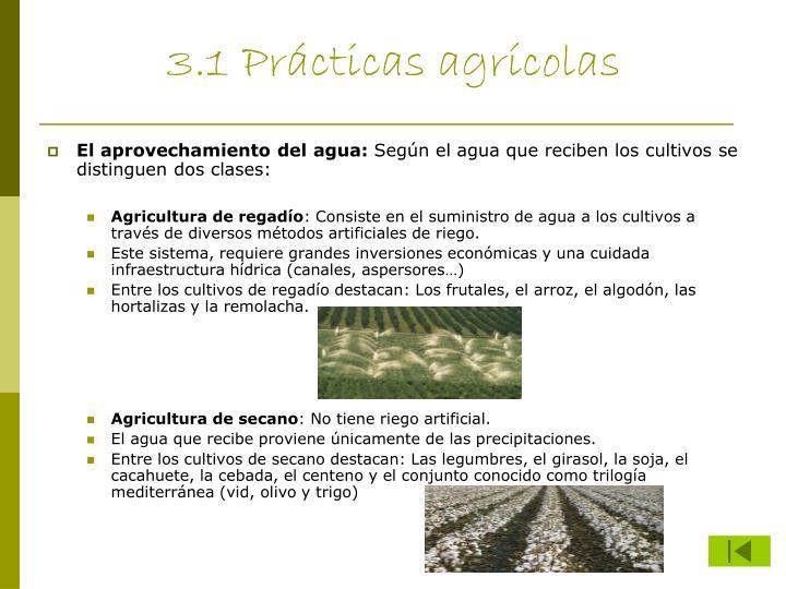 3.1 Prácticas agrícolas