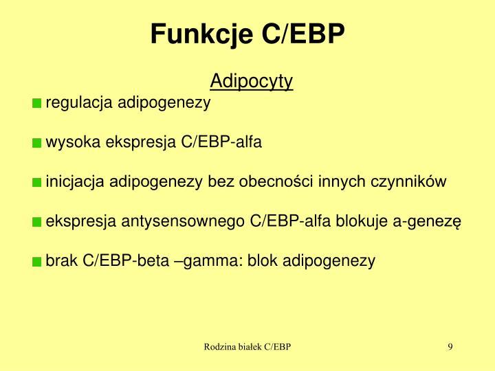 Funkcje C/EBP