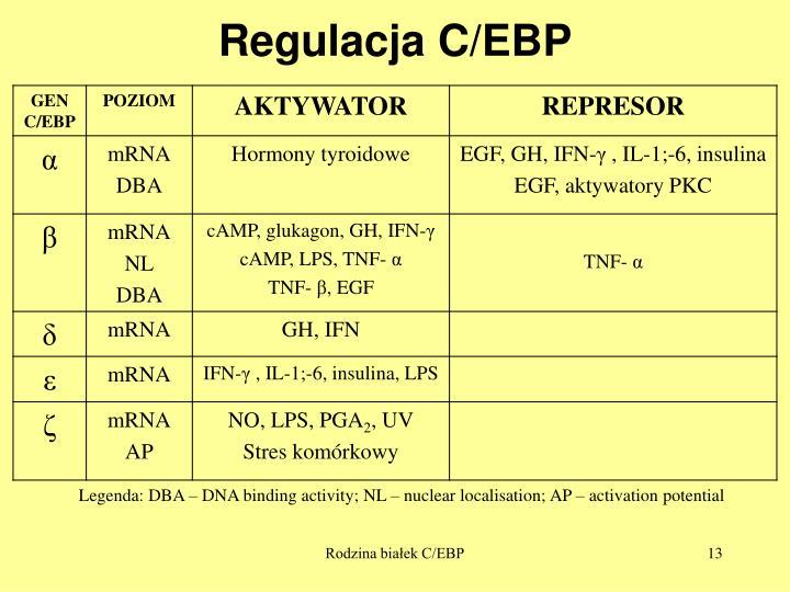Regulacja C/EBP