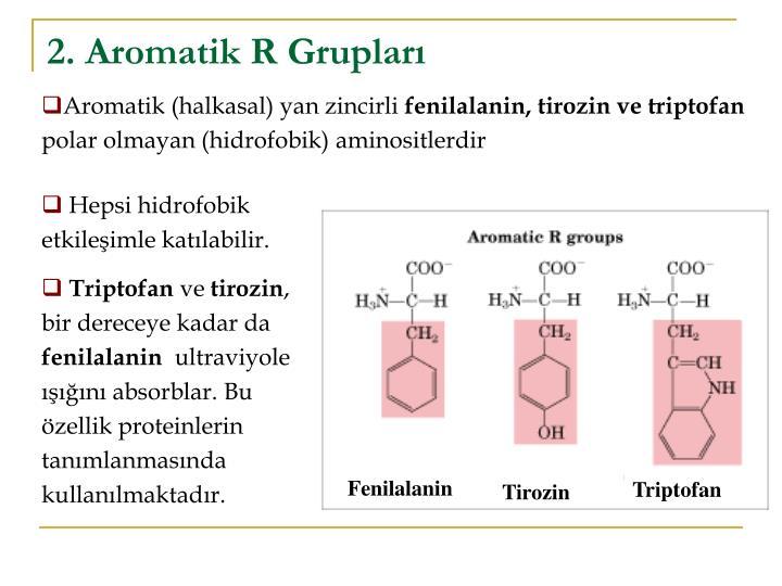 2. Aromatik R Grupları