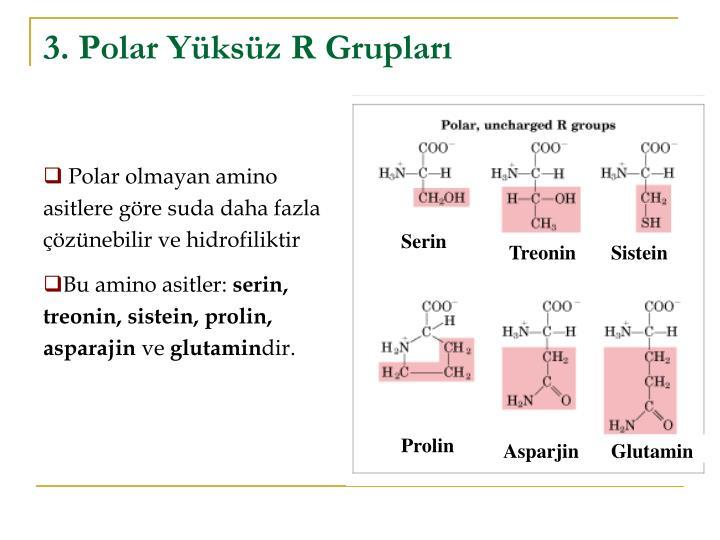 3. Polar Yüksüz R Grupları