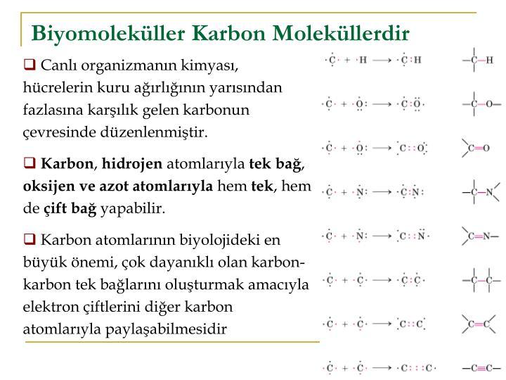 Biyomoleküller Karbon Moleküllerdir