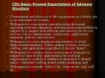 cio assoc provost expectations of advisory structure