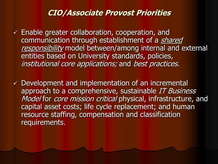 CIO/Associate Provost Priorities