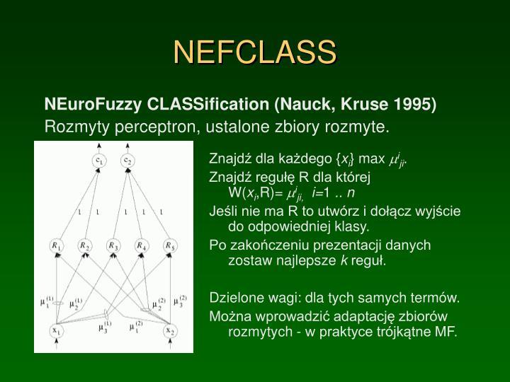 NEFCLASS