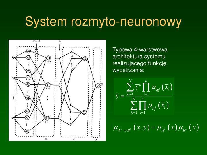 System rozmyto-neuronowy