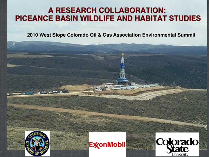 gas or grouse essay Student crossword | energy by frank longo examining the natural gas fracking controversy the plight of the sage grouse and energy production.