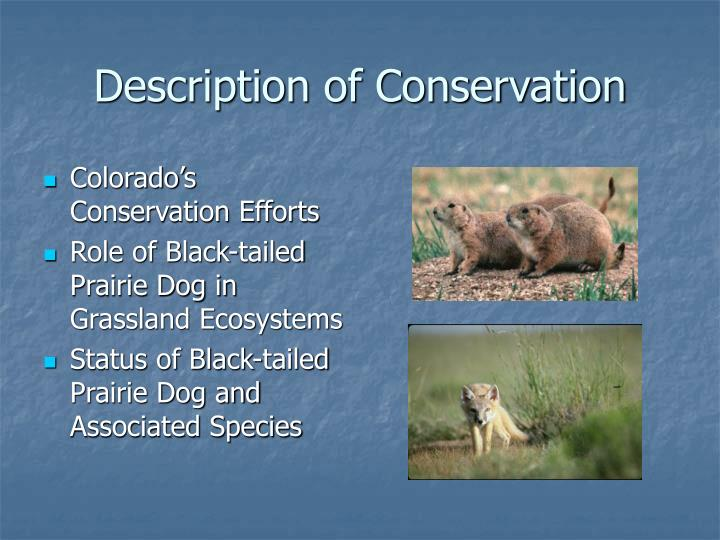 Description of Conservation