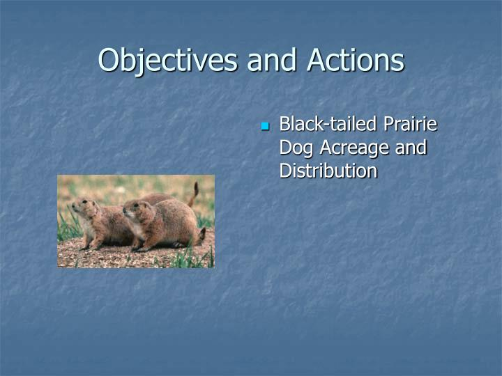 Objectives and Actions