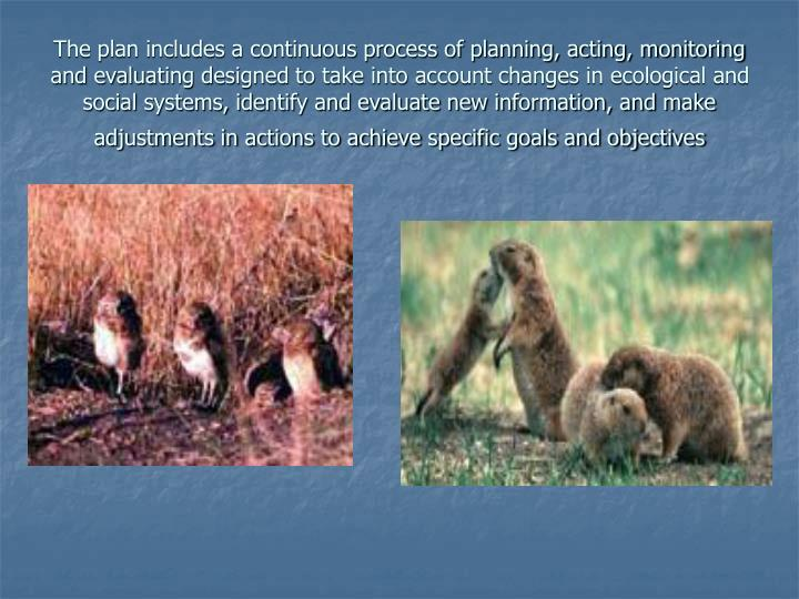 The plan includes a continuous process of planning, acting, monitoring and evaluating designed to take into account changes in ecological and social systems, identify and evaluate new information, and make adjustments in actions to achieve specific goals and objectives