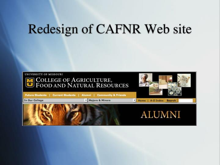 Redesign of CAFNR Web site