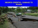 negros oriental damage to roads