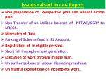 issues raised in cag report