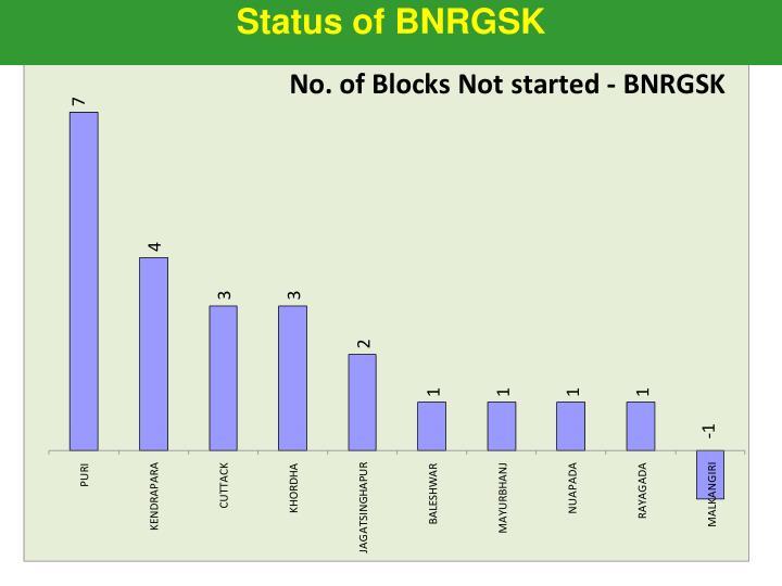 Status of BNRGSK