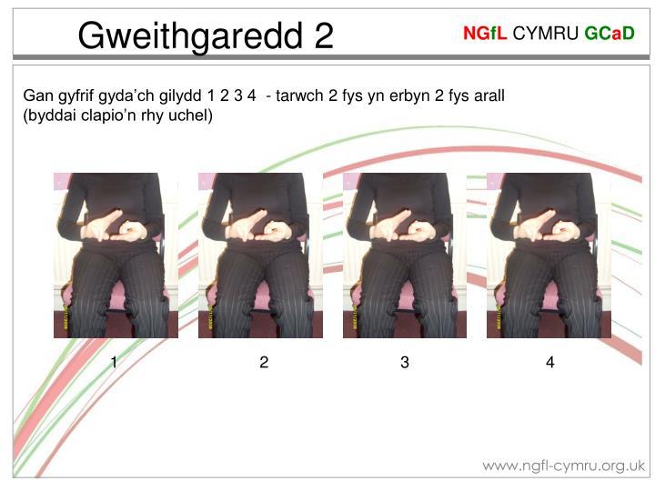 Gweithgaredd 2