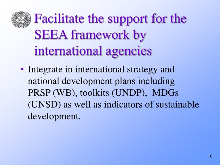 Facilitate the support for the SEEA framework by international agencies