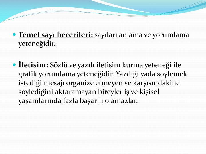 Temel say becerileri: